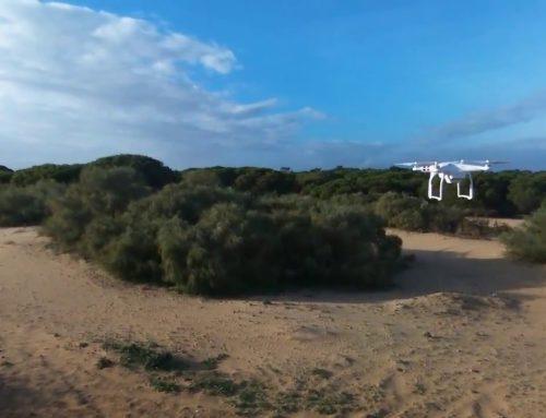 LA UNIVERSIDAD DE HUELVA IMPARTIRÁ UN CURSO DE PILOTO OFICIAL DE DRONES