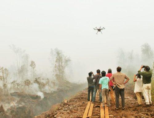 PROS, CONTRAS Y POTENCIAL USO DE DRONES PARA LA INVESTIGACIÓN FORESTAL